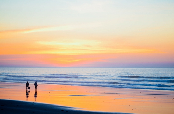 Couple with a dog walking along a beach at sunset