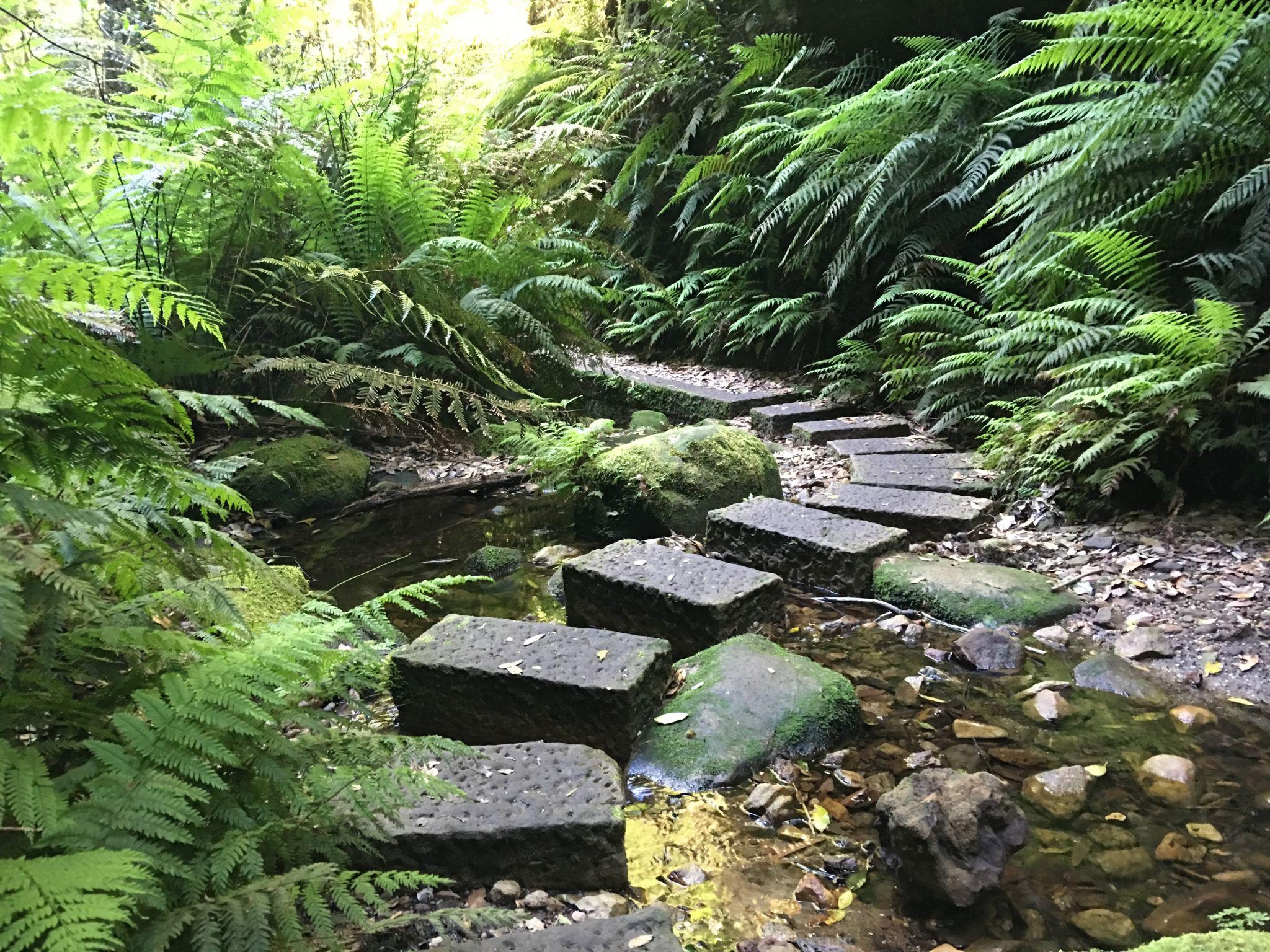 Stepping stones through a stream