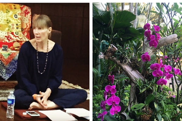 Sallyanne Pisk speaking at Singapore Mindfulness Talk