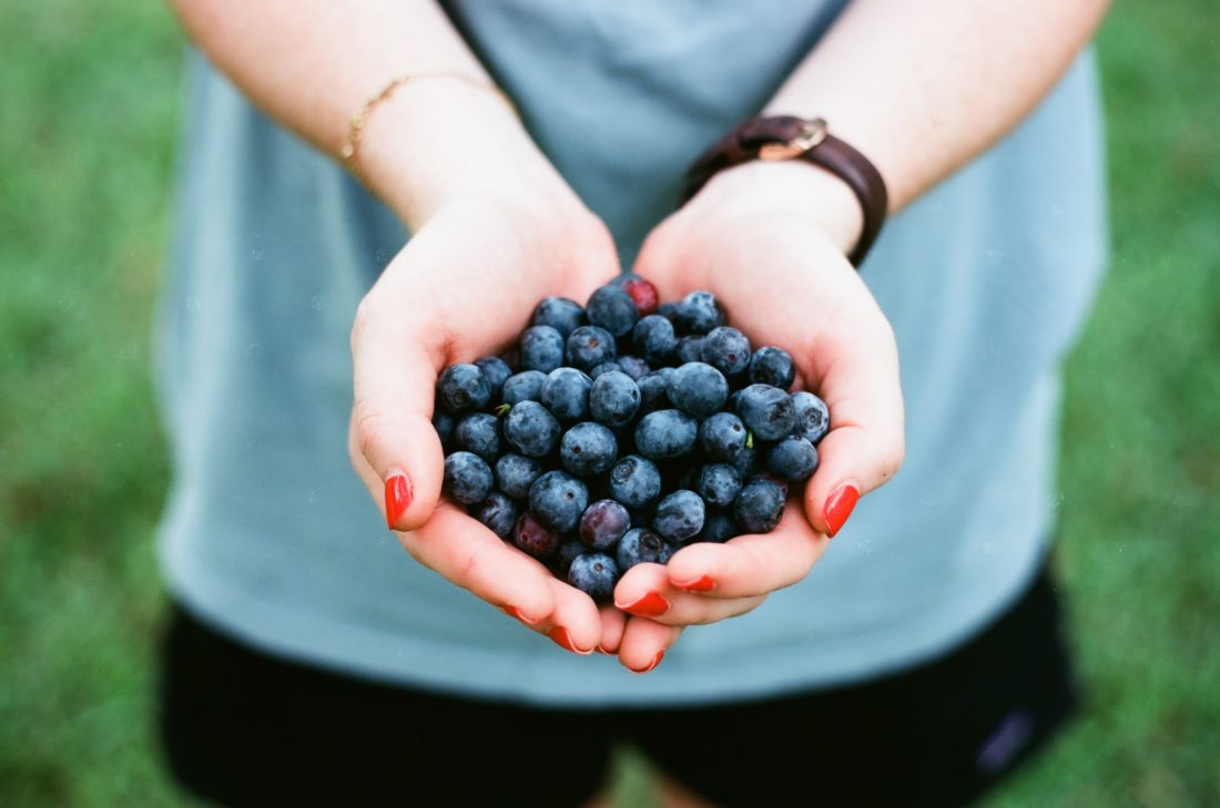 Unsplash blueberries-andrew-welch