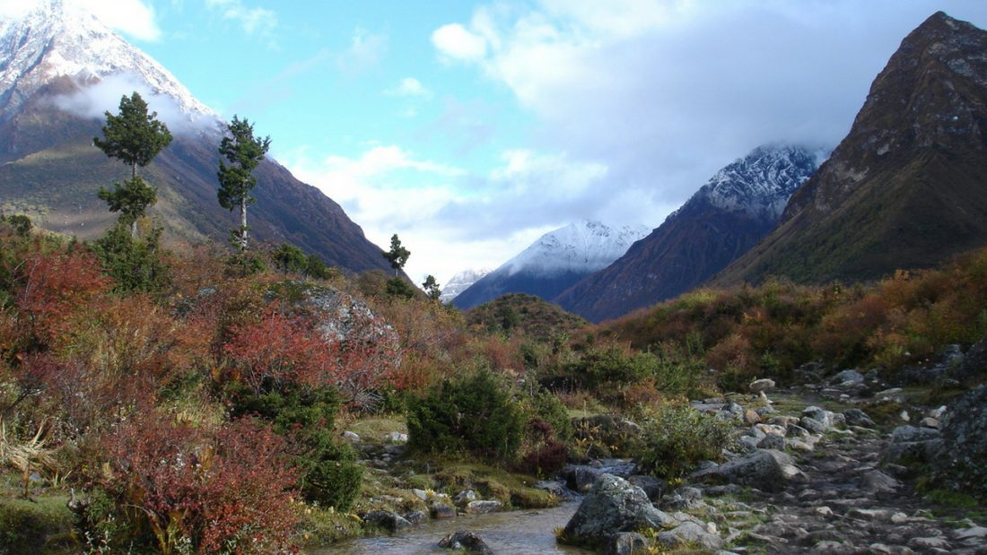 Mountain and creek image with snow capped peaks and colourful shrubs
