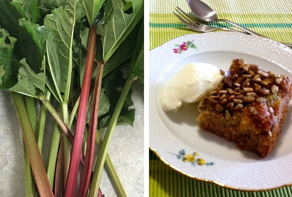 Fresh picked rhubarb alongside home made rhubarb cake served with natural yoghurt