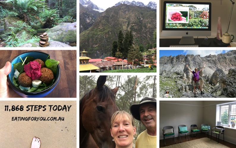 A collection of photos from Sallyanne's 2017 - family, food, trekking, Nepal, online program development and workshop space
