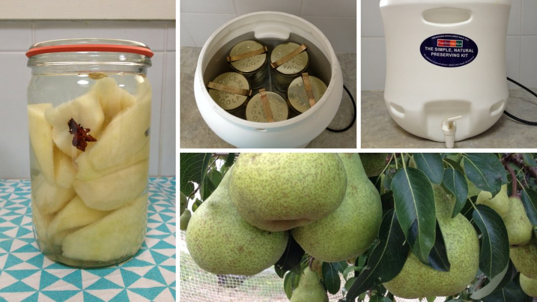 Process of preserving pears - on the tree to being bottled