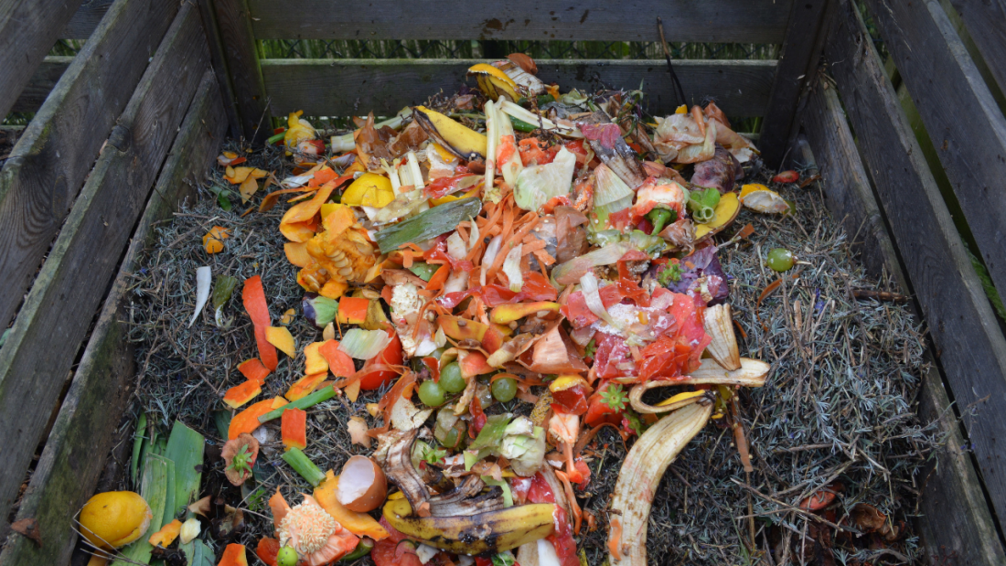 Vegetable and fruit waste in a compost bin