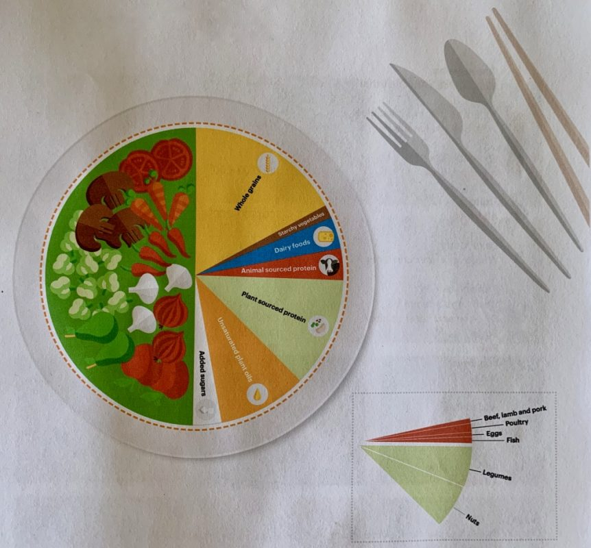 Healthy and Sustainable diet plate diagram to show portion sizes